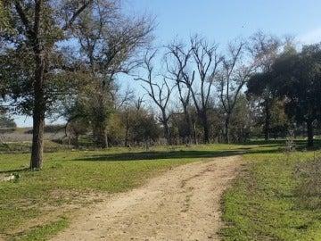 Parque Tamarguillo de Sevilla