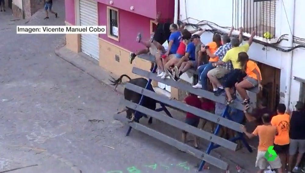 Un toro deja seis heridos durante los festejos taurinos de Serra, Valencia