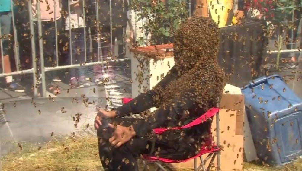 Un hombre aguanta 61 minutos sentado con la cara cubierta por abejas