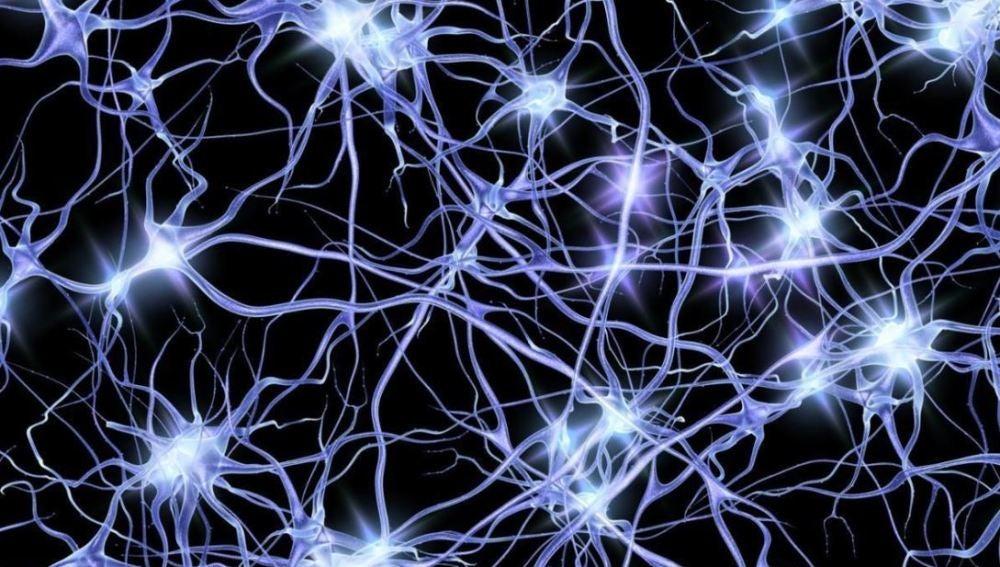 Oleadas de actividad neuronal dan nuevas pistas sobre el alzheimer