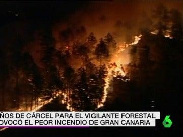 El peor incendio de Gran Canaria en 2007