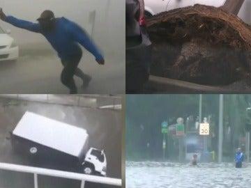 Caos tras el huracán