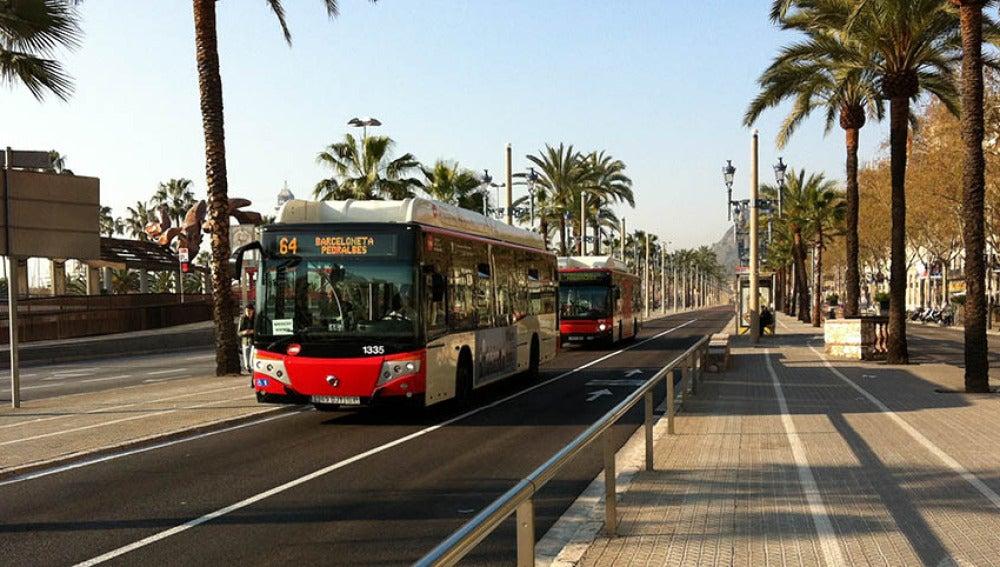 La contaminacion atmosferica aumenta en las huelgas de transporte publico