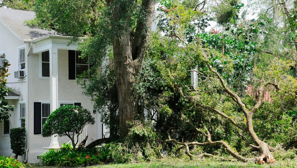 Ocho ancianos mueren en un asilo de Florida por quedarse sin luz tras el paso del huracán Irma
