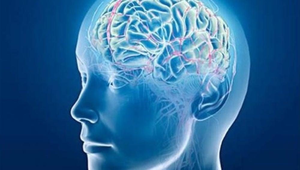 Una prueba permite determinar las capacidades cognitivas de la esquizofrenia en apenas 20 minutos
