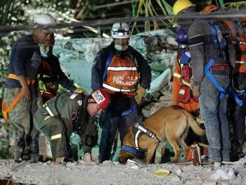 Brigadas de rescate continúan trabajando entre los escombros en México