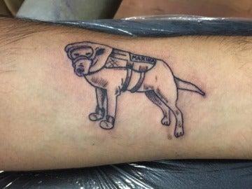 Frida, la perra heroína que los mexicanos se tatúan tras el terremoto