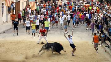 Imagen de archivo: 'bous al carrer'