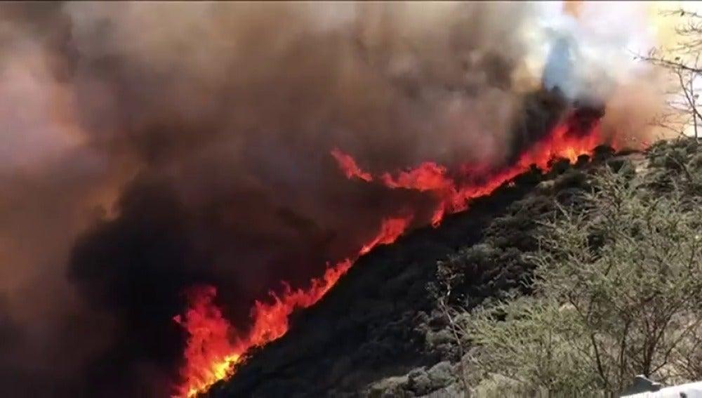 El incendio de Gran Canaria fue provocado