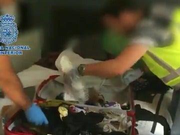 Imagen de la operación llevada a cabo por la Policía Nacional