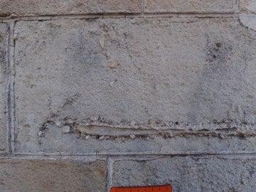 Ejemplo de un fósil en un edificio de Barcelona