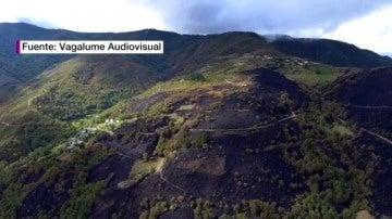 Terreno quemado por los incendios en Galicia