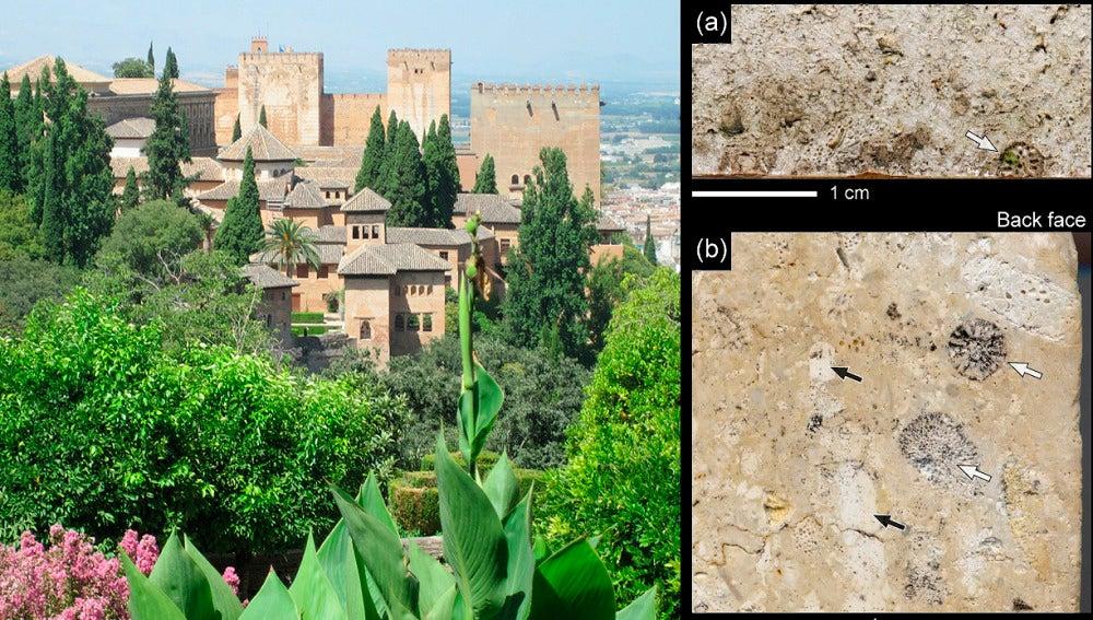 El humo de los coches y la quema de rastrojos pintan de hollin la Alhambra
