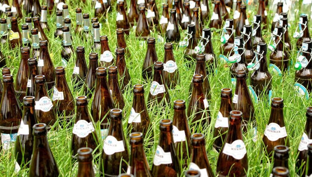 Desechos de la industria cervecera para fabricar aislantes en techos verdes