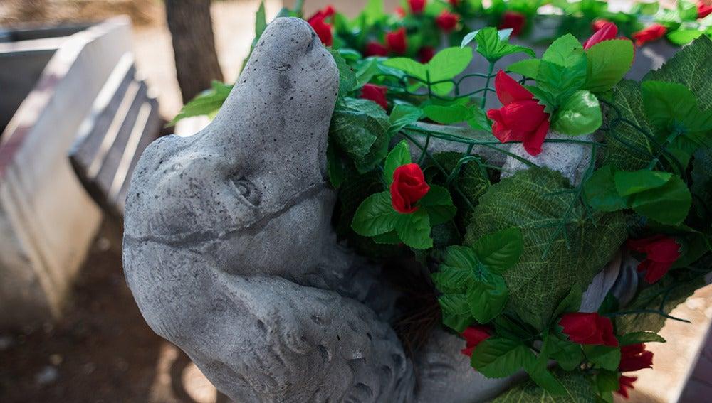 Cementerio animales