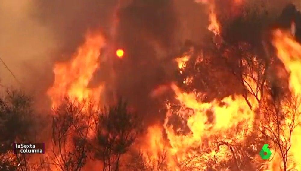 """La lucha incesante de los vecinos gallegos contra los incendios que asolan su tierra: """"Todos éramos uno, instinto natural"""""""