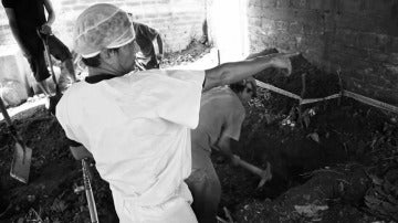 Israel Ticas, forense de El Salvador