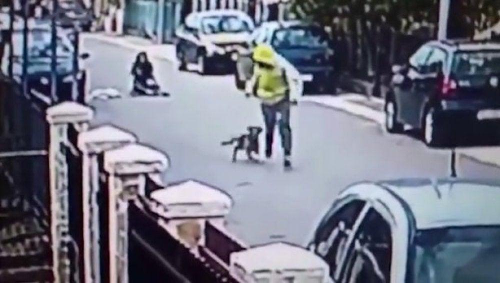 Un perro salva a una mujer de un ladrón