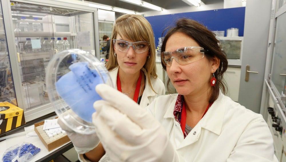 Investigadoras del ICIQ observan una de las membranas que atrapan CO2