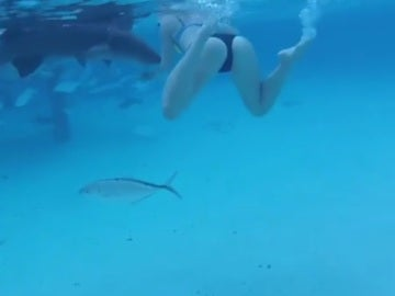 Ataque de un tiburón a una joven