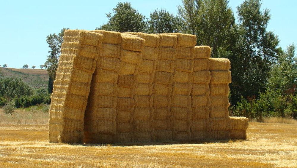 Paja de trigo para sustituir los plasticos de las baterias de litio