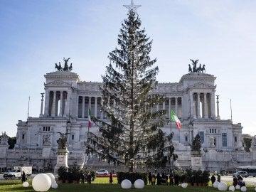 Árbol de Navidad muerto en Roma