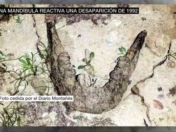 Mandíbula encontrada en el pantano del Ebro