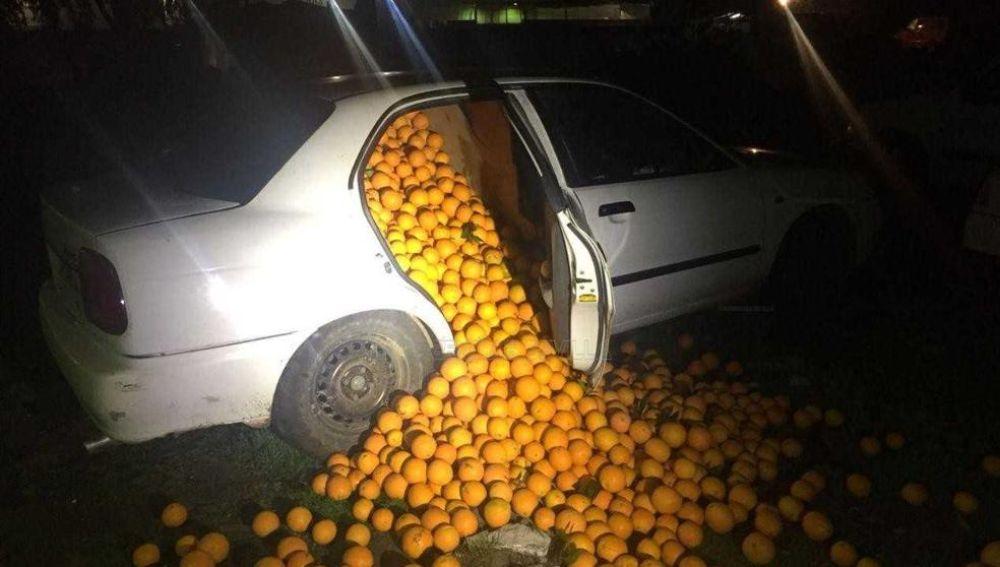 Las naranjas robadas en unos de los vehículos