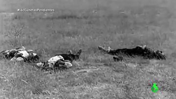 Tres cadáveres