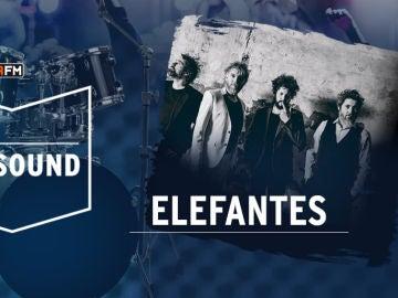 Elefantes en We Sound