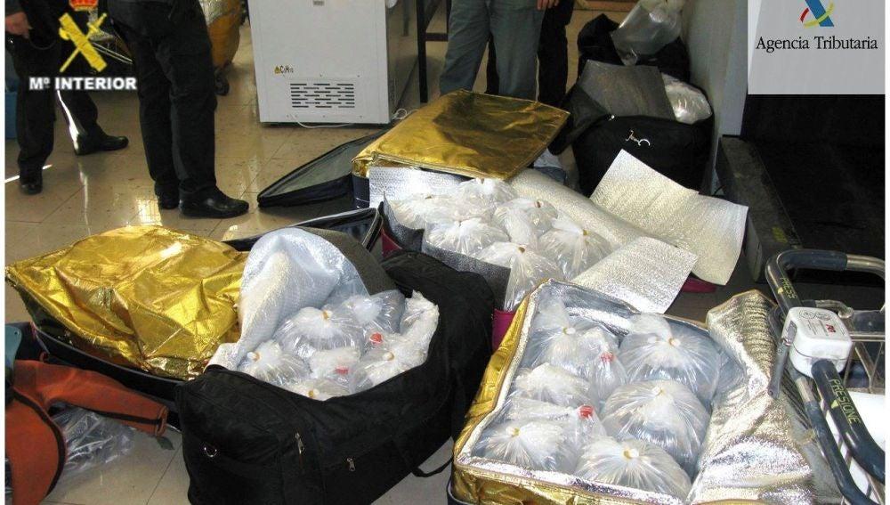 Angulas intervenidas en bolsos y maletas en Melilla