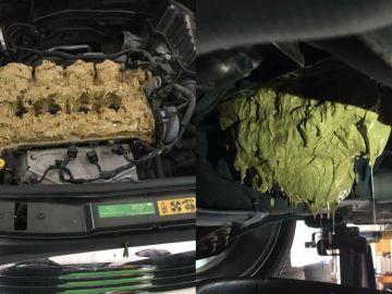 motor-mini-aceite-limpiaparabrisas-0717-02.jpg