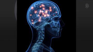¿Qué pasa en el cerebro instantes antes de la muerte?