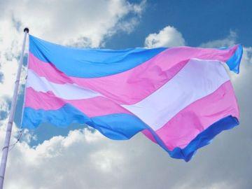 La bandera de los transexuales