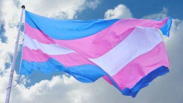 La bandera de las personas transexuales