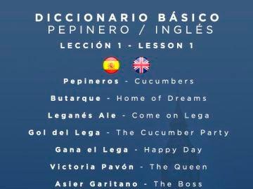 Diccionario básico pepinero - inglés
