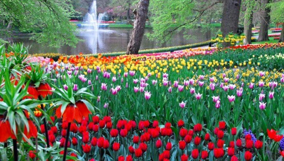 Jardines holandeses