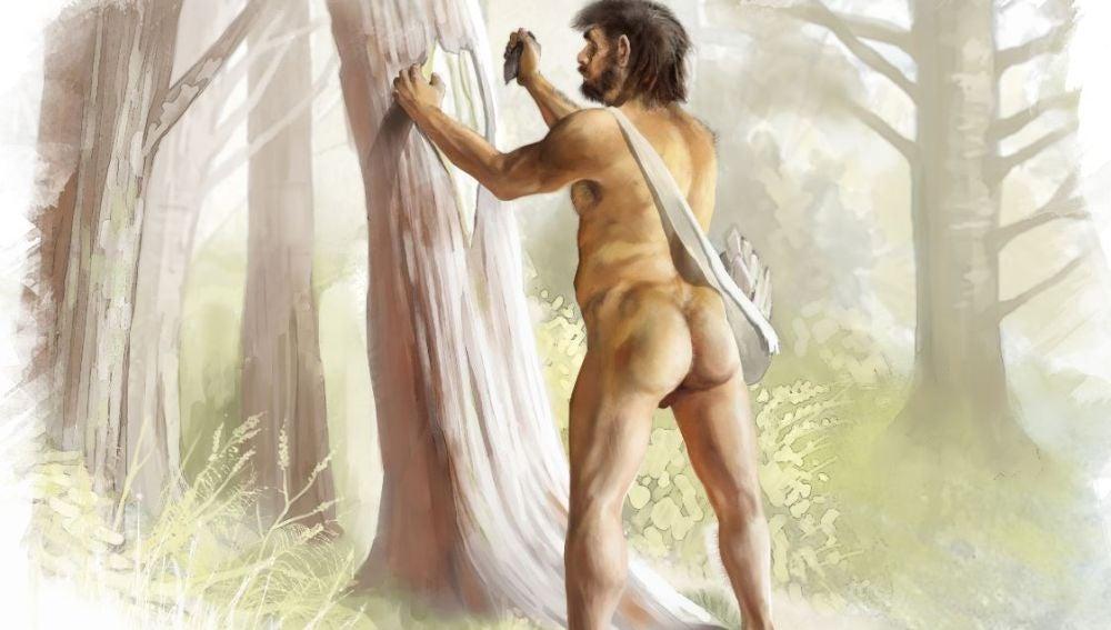 Asi fue la historia genetica de los ultimos neandertales