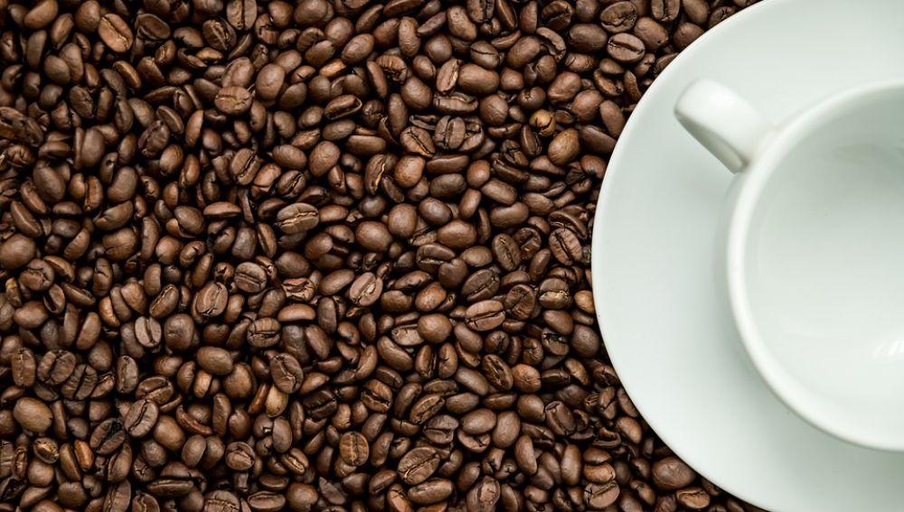 La cafeina empeora la ansiedad asociada al alzheimer