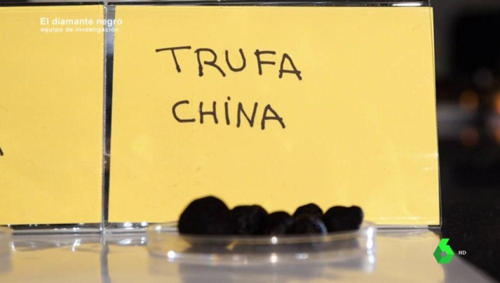 ¿Sabríamos distinguir la trufa española y la china? A simple vista un consumidor medio no podría