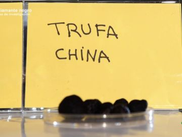 ¿Sabríamos distinguir la trufa española y la china? A simple vista un consumidor medio no podría