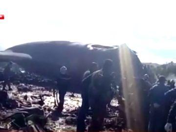 Mueren al menos 257 personas  al estrellarse un avión de las Fuerzas Aéreas de Argel