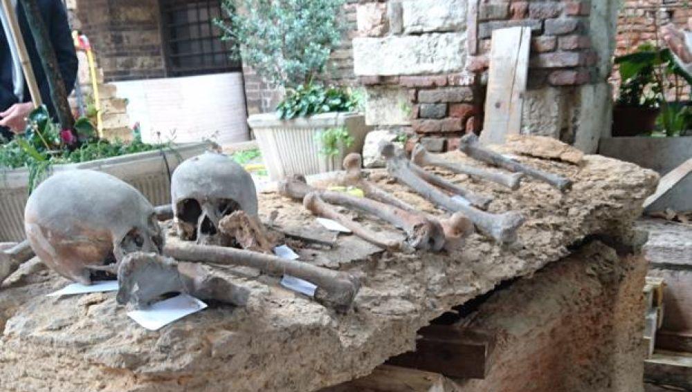 Algunos de los restos hallados