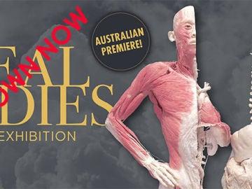 """Campaña contra la exposición """"Real Bodies"""""""