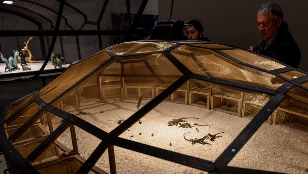 Exposición 'El teatro del mundo' en el Guggenheim Bilbao