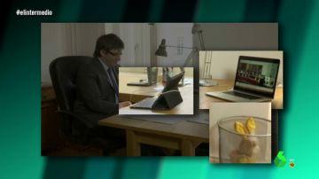 Un conejo amarillo en la basura: el mensaje oculto de Carles Puigdemont