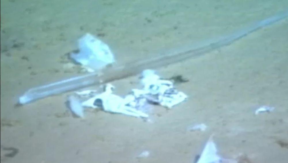 Bolsa de plástico encontrada en la fosa de las Marianas