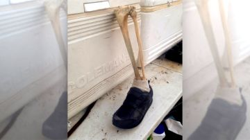 Resuelto el misterio de los pies humanos en zapatillas aparecidos en las costas de Canadá