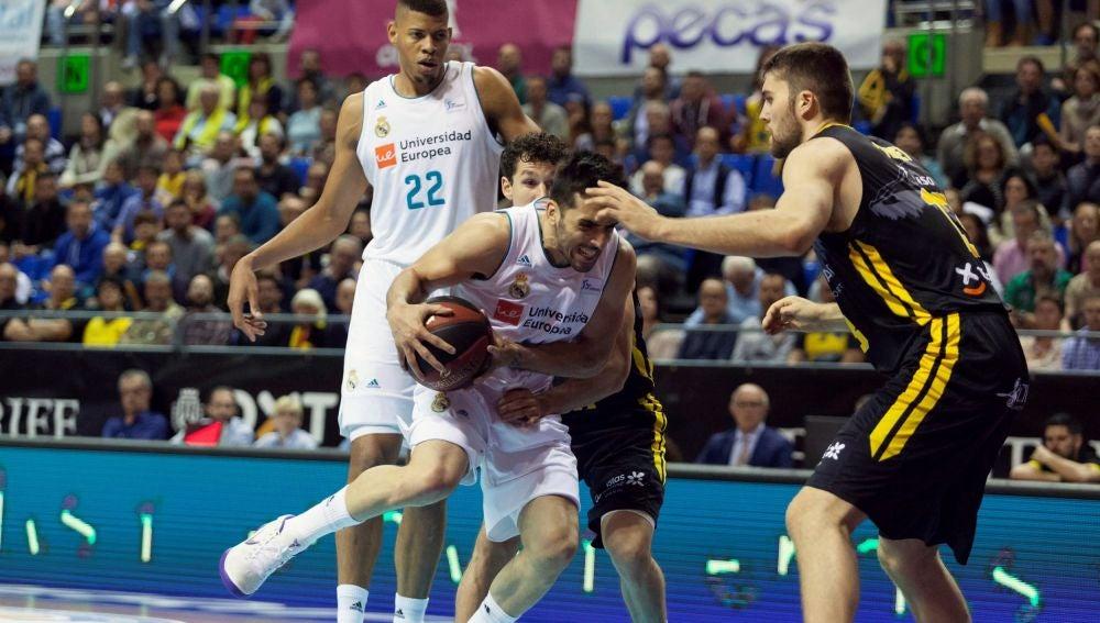Campazzo intenta penetrar a canasta ante el Tenerife