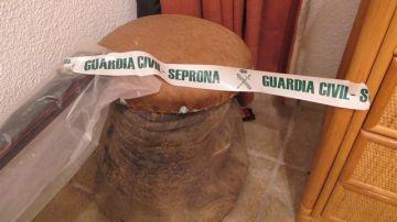 Pata de elefante intervenida en Tenerife